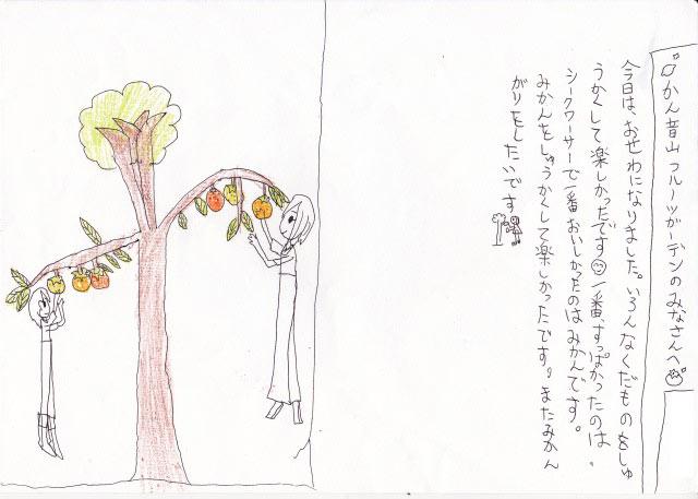 国産レモン チームぼちぼち