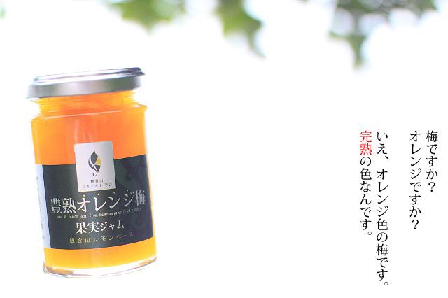 豊熟オレンジ梅ジャム