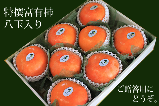 特撰富有柿