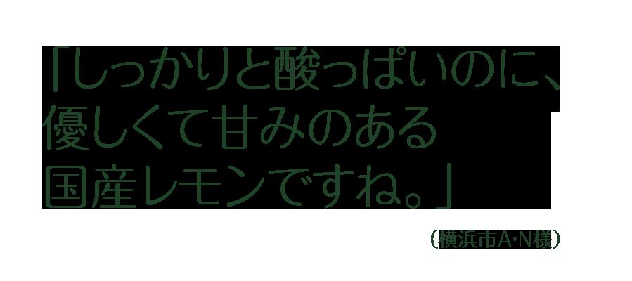 お客様の声(横浜市A・N様)<br /> <br /> <br /> <br /> 「しっかりと酸っぱいのに、優しくて甘みのある国産レモンですね。」<br />
