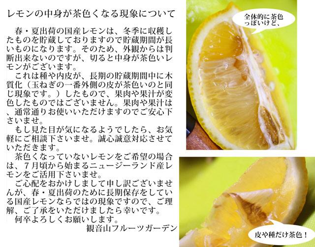 レモンの中身が茶色くなる現象について   春・夏出荷の国産レモンは、冬季に収穫したものを貯蔵しておりますので貯蔵期間が長いものになります。そのため、外観からは判断出来ないのですが、切ると中身が茶色いレモンがございます。  これは種や内皮が、長期の貯蔵期間中に木質化(玉ねぎの一番外側の皮が茶色いのと同じ現象です。)したもので、果肉や果汁が変色したものではございません。果肉や果汁は、通常通りお使いいただけますのでご安心下さいませ。  もし見た目が気になるようでしたら、お気軽にご相談下さいませ。誠心誠意対応させていただきます。  茶色くなっていないレモンをご希望の場合は、7月頃から始まるニュージーランド産レモンをご活用下さいませ。  ご心配をおかけしまして申し訳ございませんが、春・夏出荷のために長期保存をしている国産レモンならではの現象ですので、ご理解、ご了承をいただけましたら幸いです。  何卒よろしくお願いします。                観音山フルーツガーデン